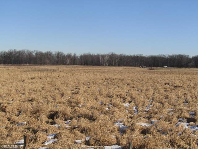 80 acres Auburn Road, Grasston, MN 55030 (#5703203) :: Lakes Country Realty LLC