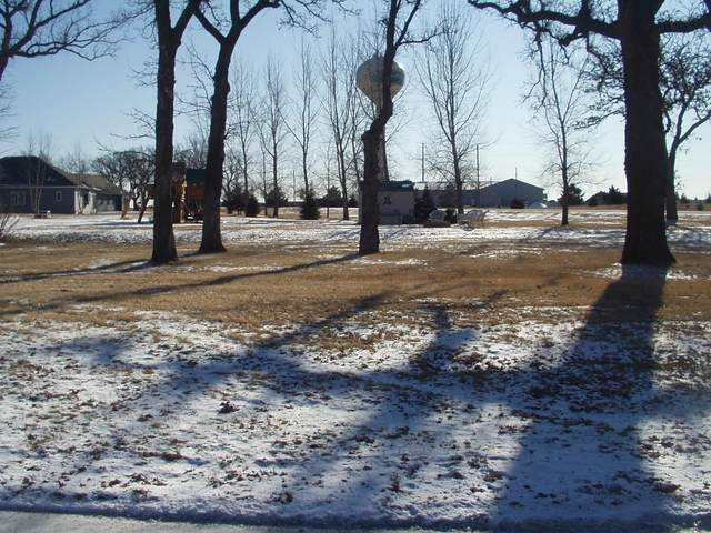 1220 Main Street, Clearwater, MN 55320 (#5703320) :: Straka Real Estate