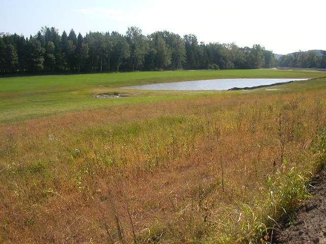 2540 Clubhouse Drive, Lake City, MN 55041 (#5703374) :: Straka Real Estate