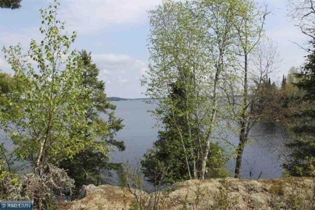 5624 Pine Island S, Tower, MN 55790 (#5703682) :: The Preferred Home Team