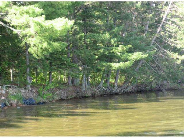 TBD Lower Ten Mile Lake Road NW, Hackensack, MN 56452 (#5703838) :: Lakes Country Realty LLC