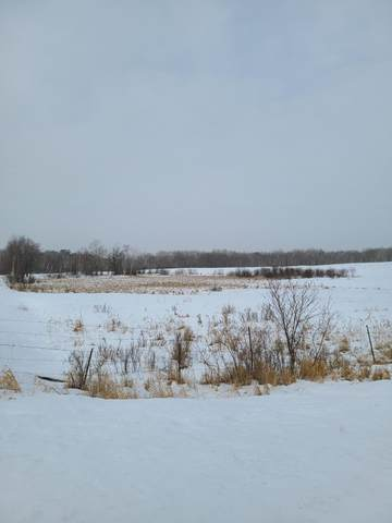 Tract 5 County Road 1, Pequot Lakes, MN 56472 (#5704317) :: The Pietig Properties Group