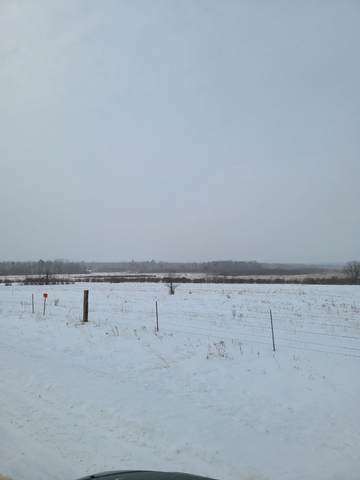 Tract 2 County Road 1, Pequot Lakes, MN 56472 (#5704352) :: The Pietig Properties Group