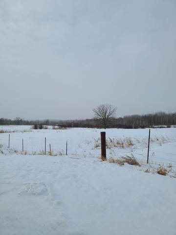 Tract 4 County Road 1, Pequot Lakes, MN 56472 (#5704369) :: Bre Berry & Company