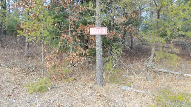 LOT 3 Pete Nelson Rd, Grantsburg, WI 54840 (#5704396) :: Holz Group
