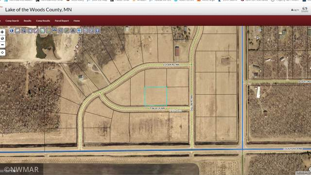 TBD Tonja Lane NW, Baudette, MN 56623 (#5706001) :: Straka Real Estate