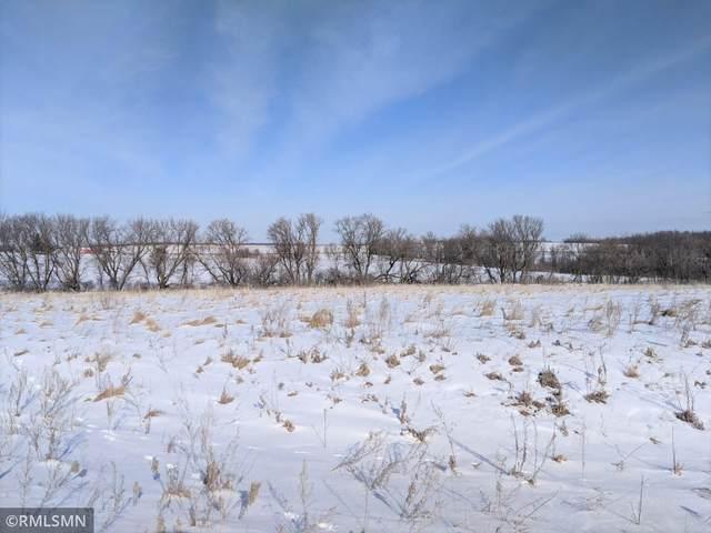 XXX Fitcher Drive, Long Prairie, MN 56347 (#5706315) :: The Smith Team