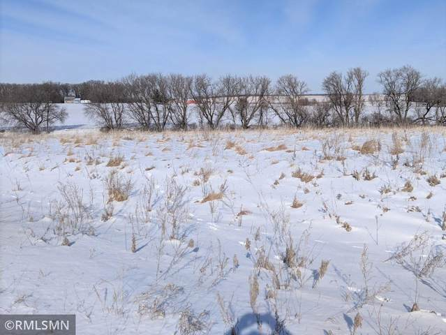 XX Fitcher Drive, Long Prairie, MN 56347 (#5706352) :: Bos Realty Group