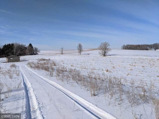 X Fitcher Drive, Long Prairie, MN 56347 (#5706361) :: The Smith Team