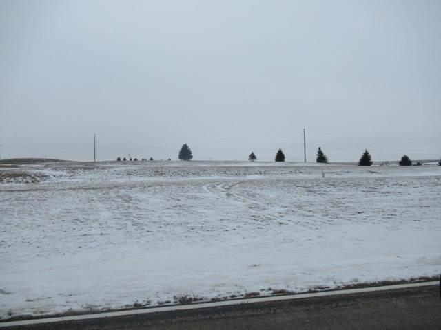 802 Ridge View Road, Beaver Creek, MN 56116 (#5708740) :: The Pomerleau Team