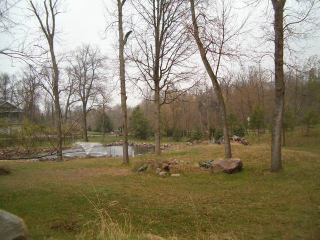 XXX Basswood Trail, Glenwood, MN 56334 (#5708963) :: Lakes Country Realty LLC
