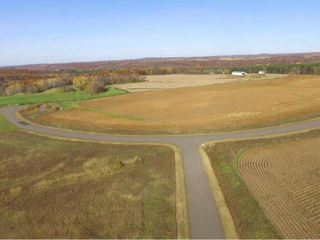 LOT 4 348th Street, Shafer, MN 55074 (#5709129) :: The Pietig Properties Group