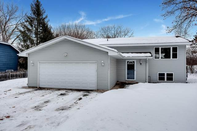 10341 Sycamore Street NW, Coon Rapids, MN 55433 (#5709887) :: Carol Nelson   Edina Realty