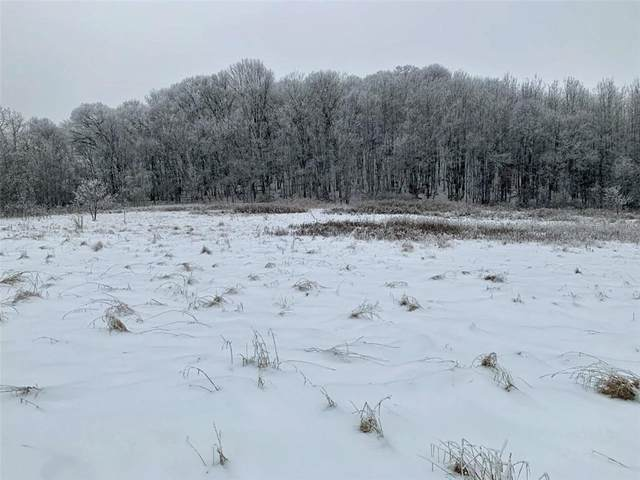 Lot 11 938th Street, Elk Mound, WI 54739 (#5710098) :: The Pomerleau Team