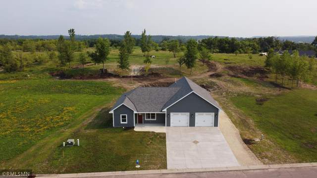 6687 Bluff Drive, Cannon Falls, MN 55009 (#5711396) :: Lakes Country Realty LLC