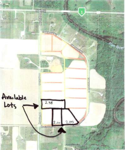 Lot 13 Blk 1 Dolphin Road, Bogus Brook Twp, MN 55371 (#5711544) :: Happy Clients Realty Advisors