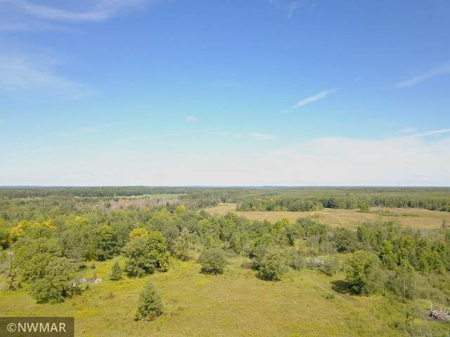 21809 380th Street, Laporte, MN 56461 (#5711726) :: Lakes Country Realty LLC