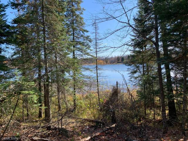 XXX Tract 4 Baby Lake, Hackensack, MN 56452 (#5713115) :: Lakes Country Realty LLC