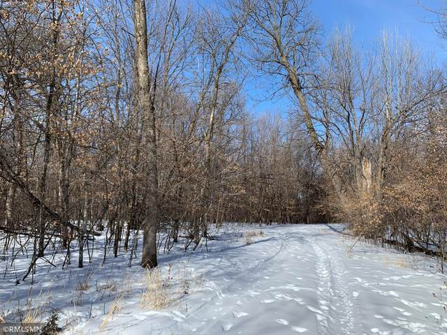 6767 150th Avenue NW, New London, MN 56273 (#5713803) :: Lakes Country Realty LLC