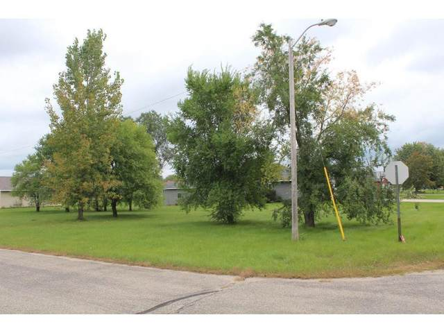 580 5th Street NW, Richmond, MN 56368 (#5714706) :: Lakes Country Realty LLC