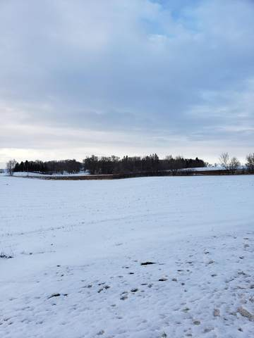 XXXX Co Rd 2 SE, Osakis Twp, MN 56360 (#5714871) :: Servion Realty