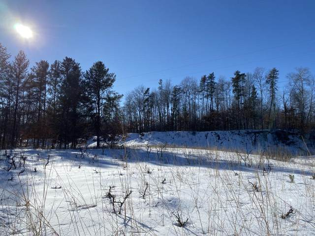 XXX Bluegill Road, Ironton, MN 56455 (#5716705) :: Lakes Country Realty LLC