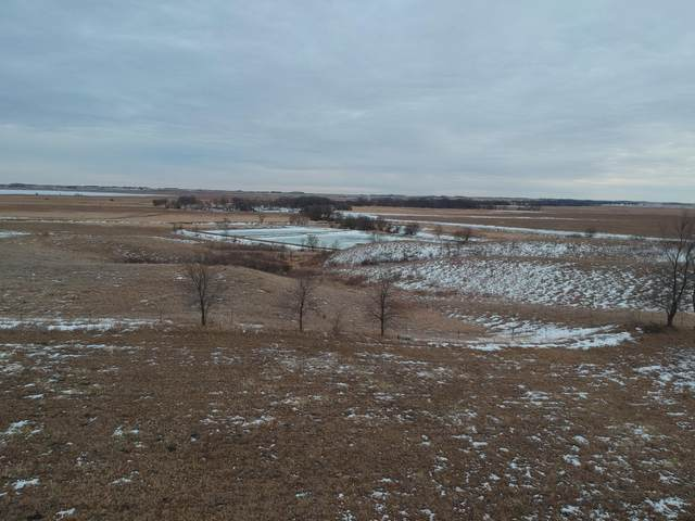 Lot 8 Ridgeview Drive, Odessa, MN 56276 (#5717185) :: Twin Cities Elite Real Estate Group | TheMLSonline
