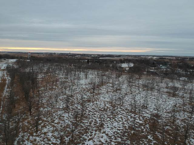 Lot 3 Ridgeview Drive, Odessa, MN 56276 (#5717226) :: Twin Cities Elite Real Estate Group | TheMLSonline