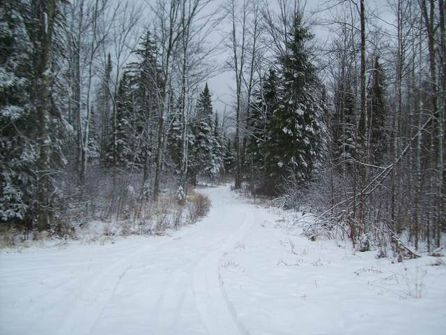 XXX County Road 4, Kalevala Twp, MN 55726 (#5718349) :: Bos Realty Group