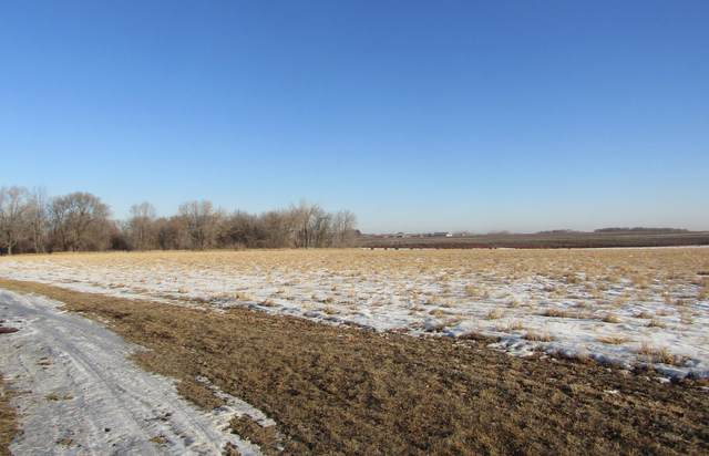 xxx Highview Drive SW, Montevideo, MN 56265 (#5718486) :: Holz Group