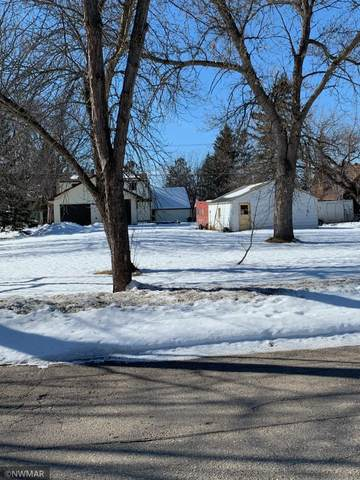 212 3rd Avenue SE, Baudette, MN 56623 (#5718702) :: Holz Group