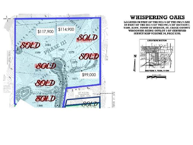 Lot 21 Autumn Oak Lane, Hudson, WI 54016 (#5719293) :: Holz Group