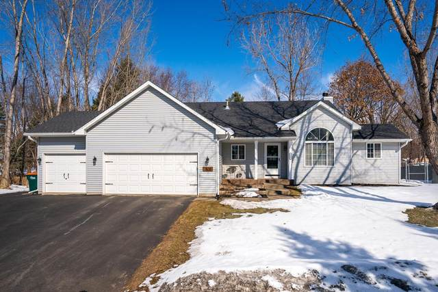 1805 129th Avenue NE, Blaine, MN 55449 (#5719471) :: Twin Cities Elite Real Estate Group | TheMLSonline