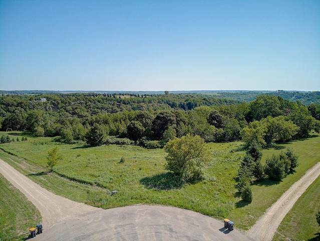xxx 522nd Avenue, Prescott, WI 54021 (MLS #5719562) :: The Hergenrother Realty Group