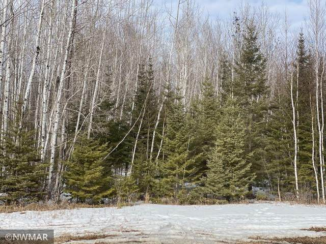 40 acres Alvwood Road NE, Blackduck, MN 56630 (#5719753) :: Straka Real Estate