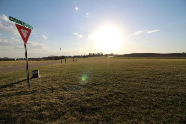 405 Prairie Circle, Ashby, MN 56309 (#5720379) :: Servion Realty