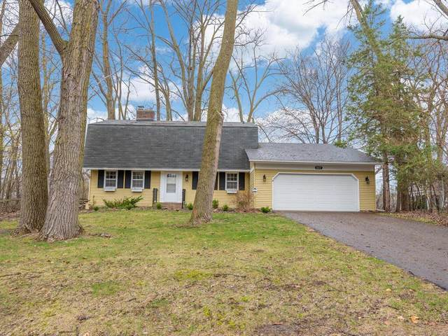 837 Heinel Drive, Roseville, MN 55113 (#5721838) :: Lakes Country Realty LLC