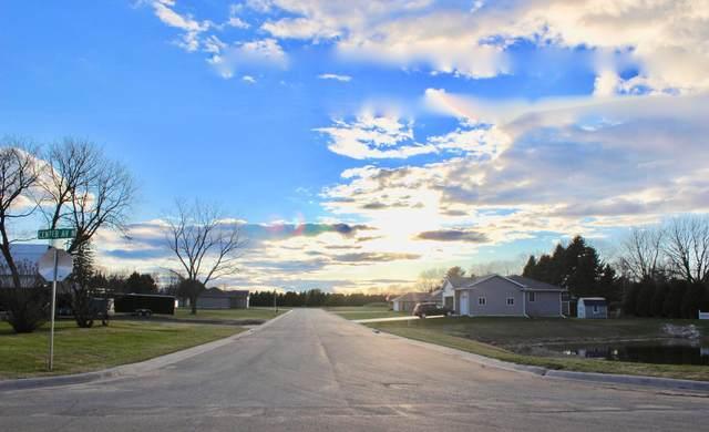 209 6th Street NW, Blooming Prairie, MN 55917 (MLS #5722097) :: RE/MAX Signature Properties