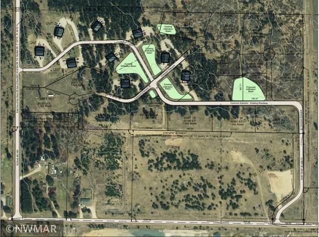 Lot 21 Wild Rose Lane NW, Bemidji, MN 56601 (#5722433) :: Holz Group