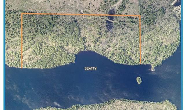 xx57 Ban Lake Spur North, Orr, MN 55771 (#5723026) :: Lakes Country Realty LLC