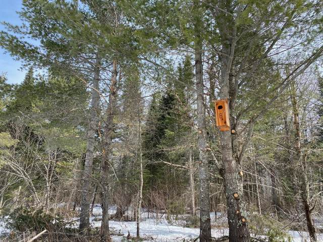 TBD Rollick, Crane Lake Twp, MN 55725 (#5723123) :: The Pietig Properties Group