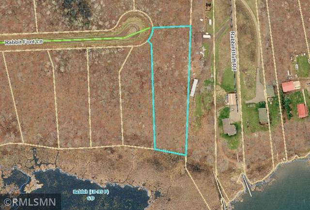 TBD LOT 6 Rabbit Foot Lane, Rabbit Lake Twp, MN 56441 (#5723338) :: Holz Group