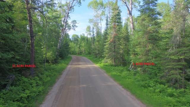 xx14.9 Nelson Road, Crane Lake, MN 55725 (#5723675) :: The Pietig Properties Group