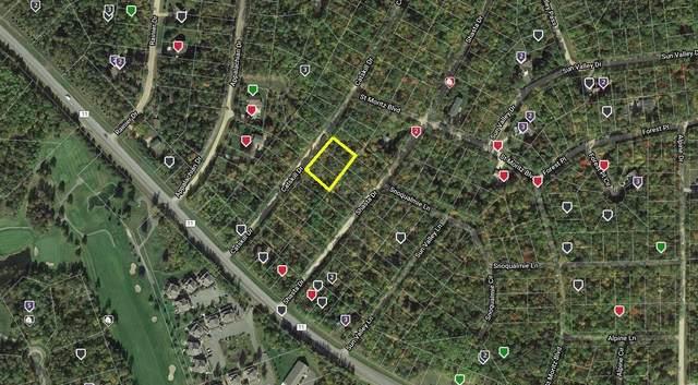 171819 Catskill Drive, Breezy Point, MN 56472 (#5724126) :: The Pomerleau Team