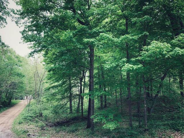 3350 Culver Trail, Faribault, MN 55021 (#5724697) :: The Pomerleau Team