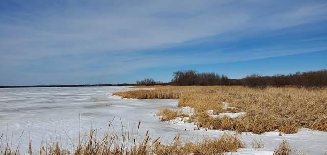 TBD State Hwy 46 N, Squaw Lake, MN 56681 (#5724722) :: Carol Nelson | Edina Realty