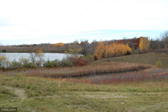 xxx Hwy 15, Dassel, MN 55325 (#5725915) :: Lakes Country Realty LLC