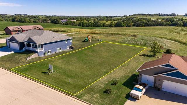 633 Manheim Avenue, Saint Charles, MN 55972 (#5726588) :: Twin Cities Elite Real Estate Group | TheMLSonline
