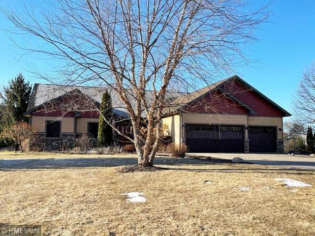 13969 202nd Street N, Scandia, MN 55047 (#5726639) :: Servion Realty
