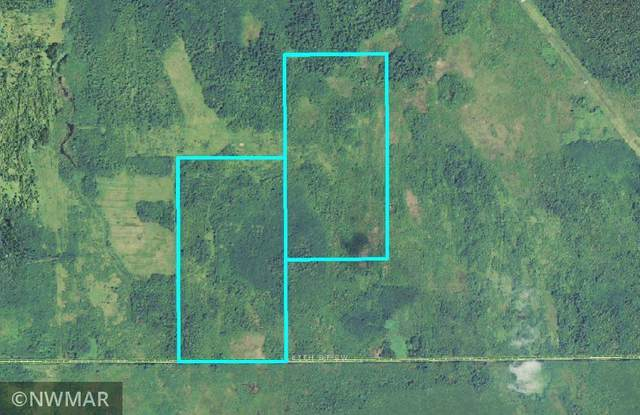 TBD 87th Street SE, Baudette, MN 56623 (#5727336) :: Lakes Country Realty LLC